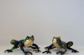 Art.06 - Frogs